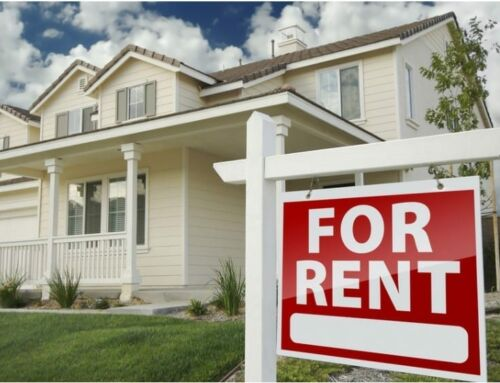 Most Enjoy Renting: Survey